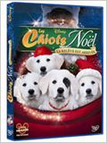 Les Chiots No&#235;l, la rel&#232;ve est arriv&#233;e