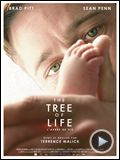 Photo : The Tree of Life Bande-annonce VO