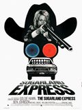 Sugarland express