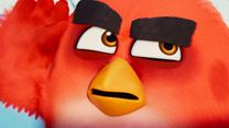 Angry Birds : Copains comme cochons Bande-annonce VF