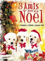 3 Amis pour Noël