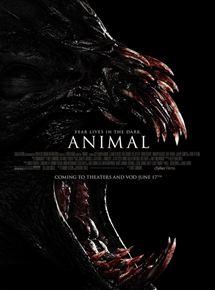 Animal streaming
