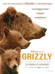 Grizzly streaming