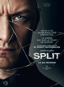 Split VOSTFR HDRiP