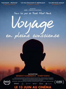 Voyage en pleine conscience streaming