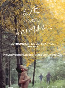 We The Animals streaming gratuit