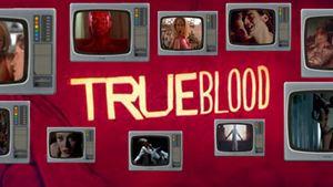 True Blood : le best-of #NSFW de la série la plus WTF?!