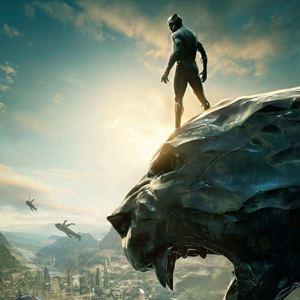 Black Panther Photos Et Affiches Allocin 233