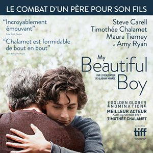 My Beautiful Boy : Affiche