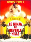 Le Ninja de Beverly Hills