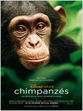 Chimpanz&#233;s