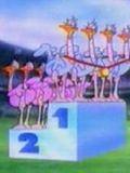 Zoo Olympics