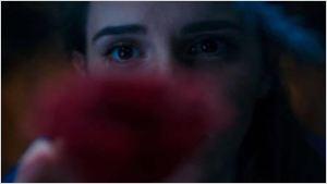 La Belle Emma Watson, le Hibou Ramzy Bedia, le trekkie Chris Pine... Ils sont dans les bandes-annonces ciné à ne pas rater !