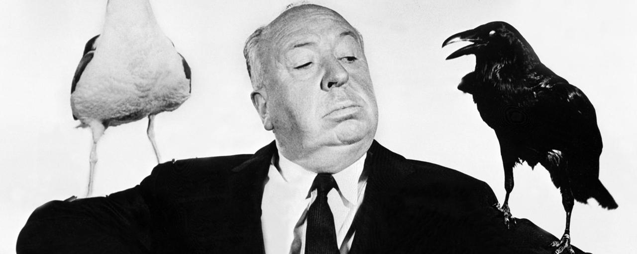 Les Oiseaux d'Alfred Hitchcock bientôt adapté en série par le producteur des Harry Potter