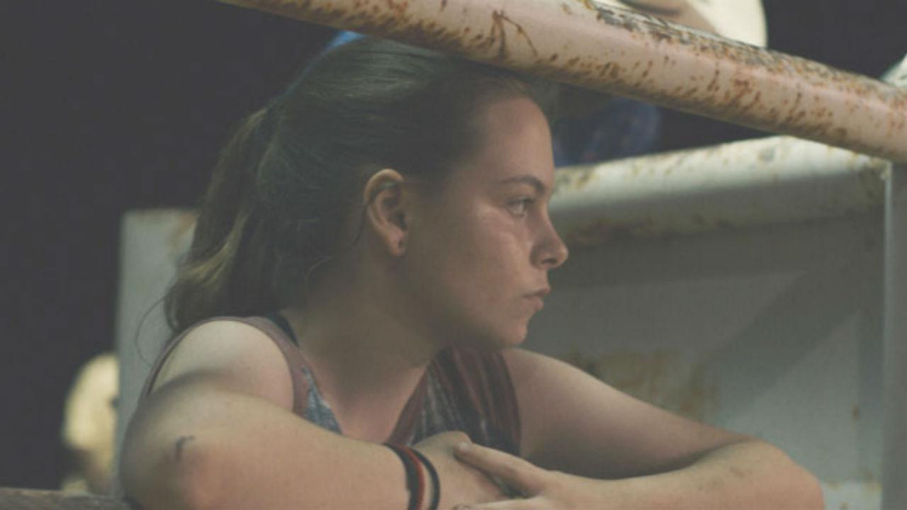 Palmarès Deauville 2019 : les trois jurys saluent Bull d'Annie Silverstein