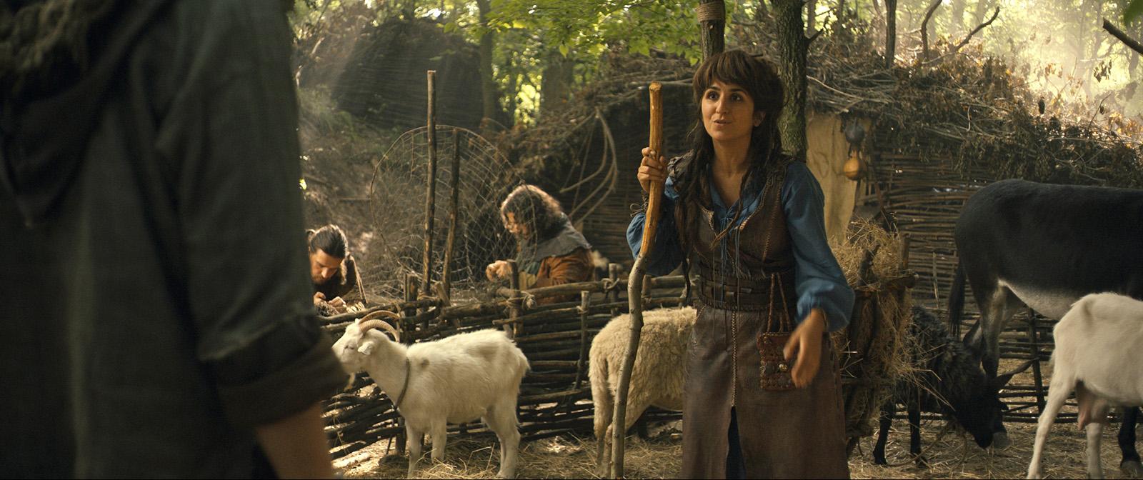 Photo du film Robin des bois, la véritable histoire  ~ Film Robin Des Bois