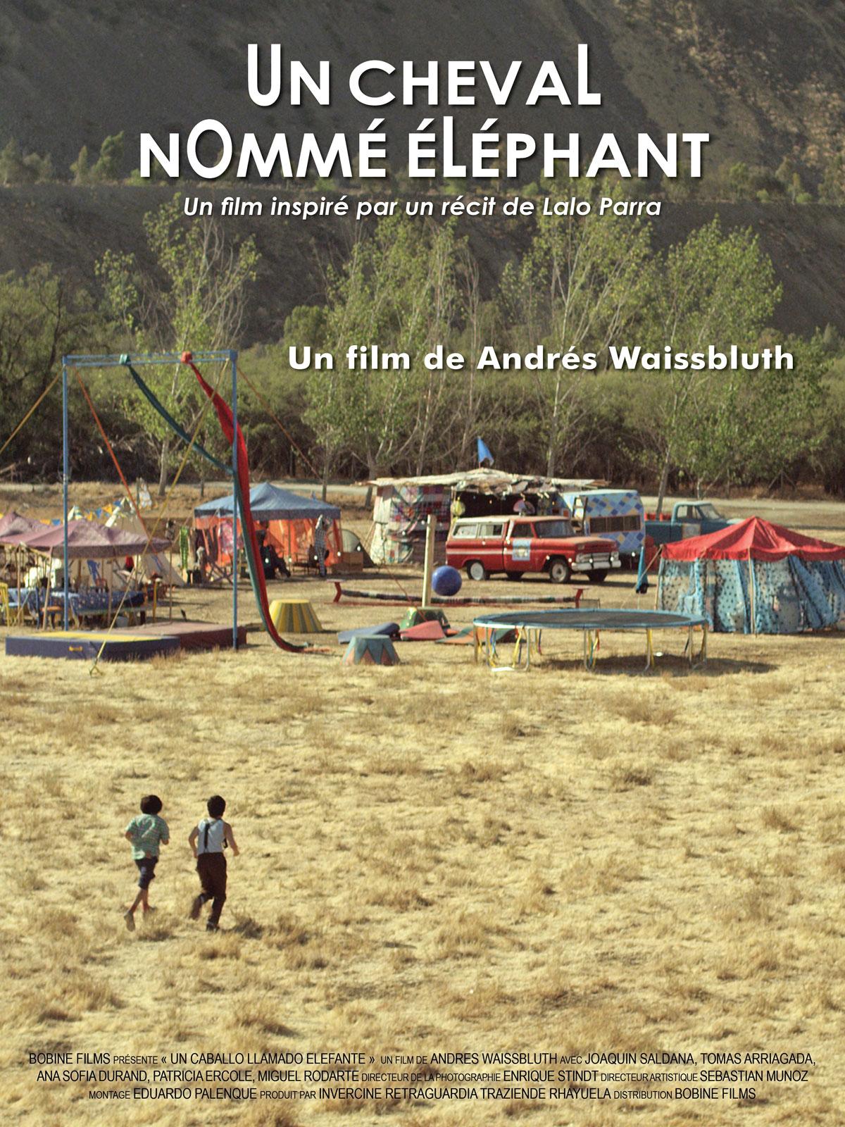 Un cheval nommé éléphant