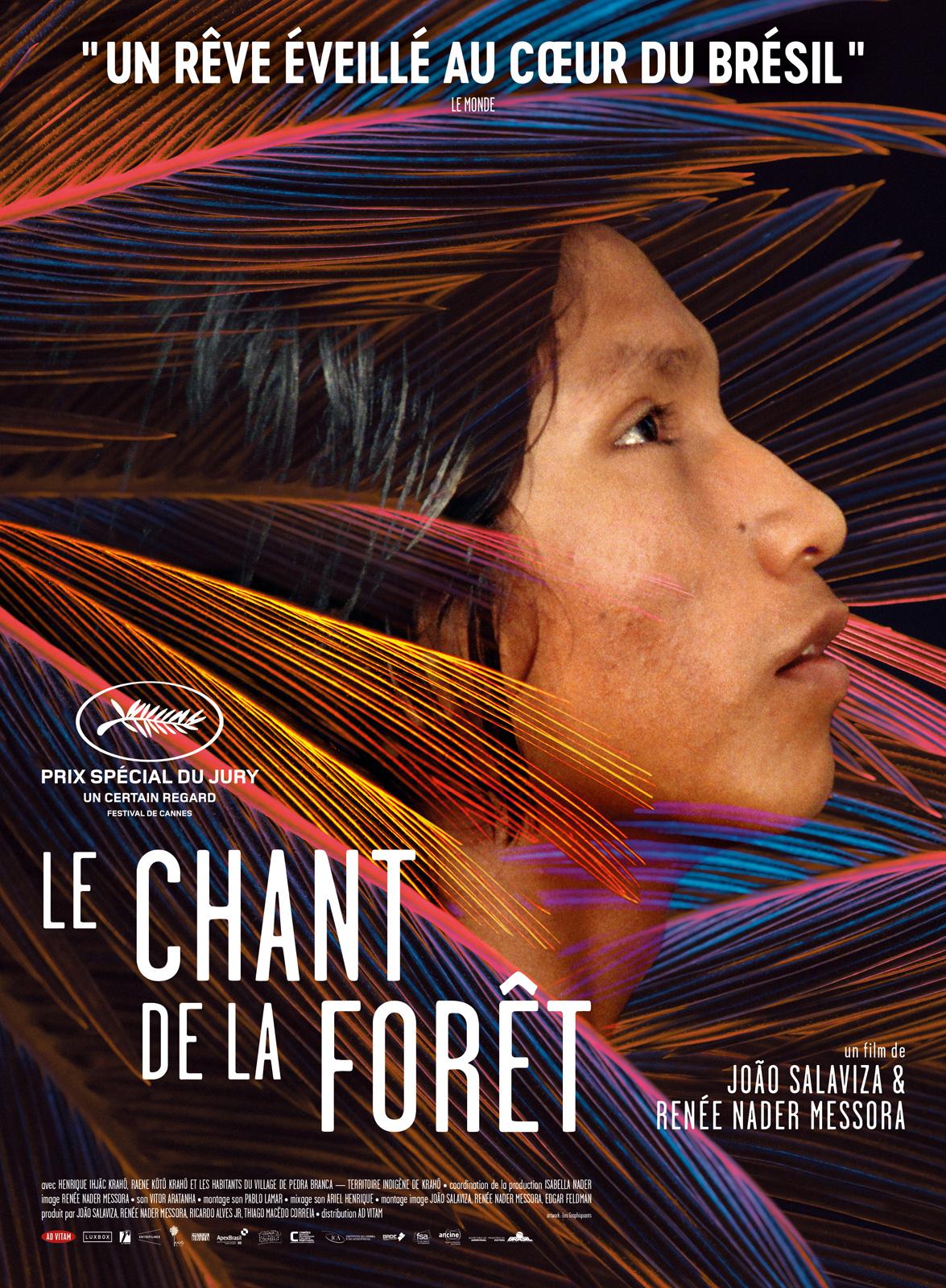 Image du film Le Chant de la forêt