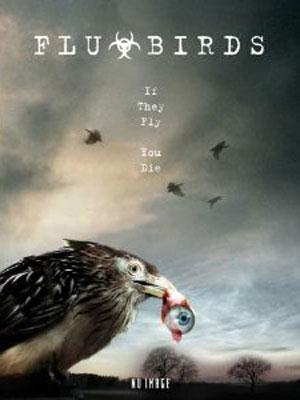 Affiche du film Les Ailes de la terreur