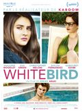 Photo : White Bird