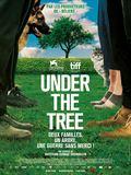 Photo : Under The Tree