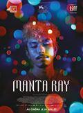 Photo : Manta Ray