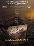 Photo : Le Chardonneret