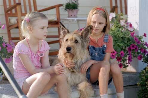 Winn-Dixie mon meilleur ami : Photo AnnaSophia Robb, Elle Fanning, Wayne Wang