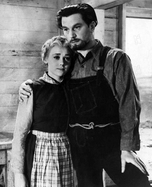 49ème parallèle : Photo Anton Walbrook, Glynis Johns