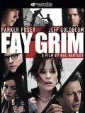 Fay Grim : Affiche