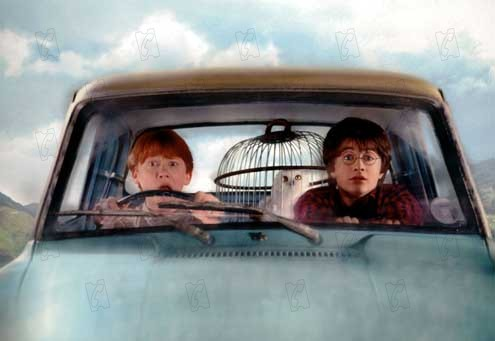 Harry Potter et la chambre des secrets : Photo Daniel Radcliffe, Rupert Grint