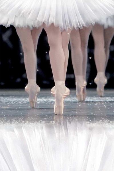La Danse, le ballet de l'Opéra de Paris : Photo Frederick Wiseman