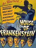 La Maison de Frankenstein : Affiche