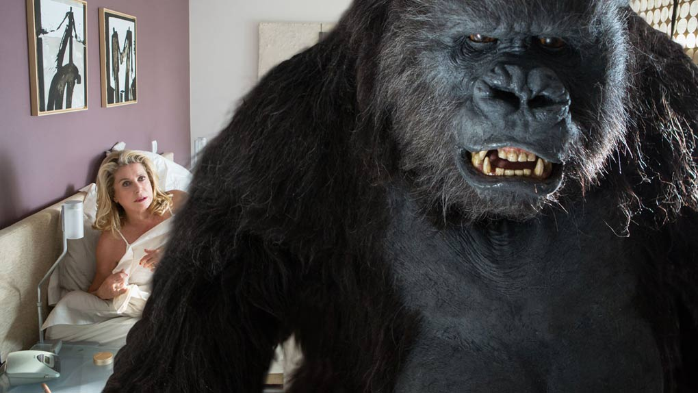 """Folle d'un gorille dans """"Le Tout Nouveau Testament"""" (2015)"""