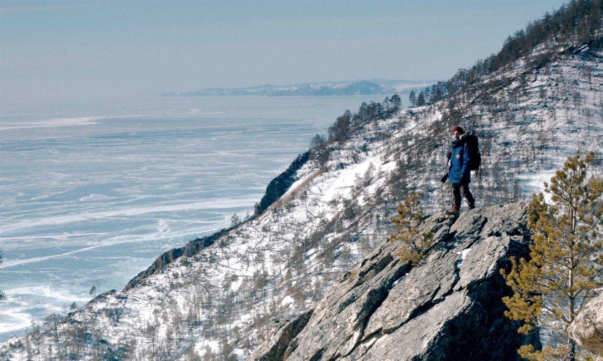 Dans les forêts de Sibérie : Photo