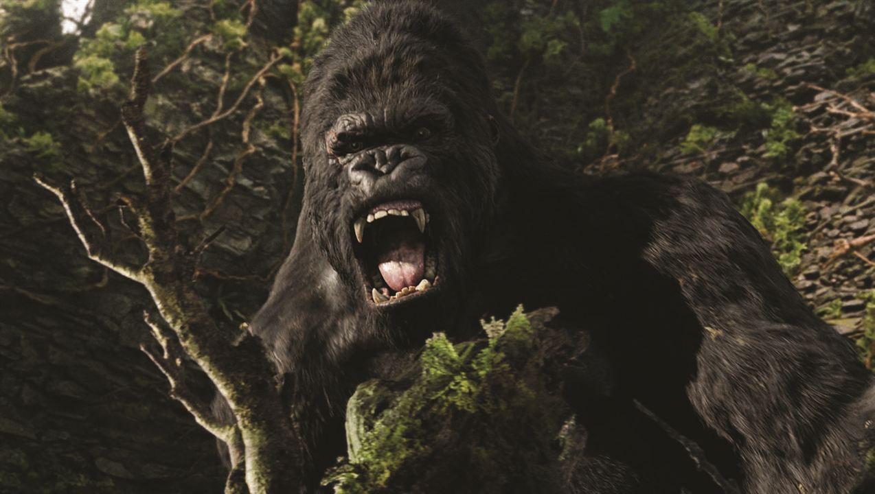 King Kong : Photo