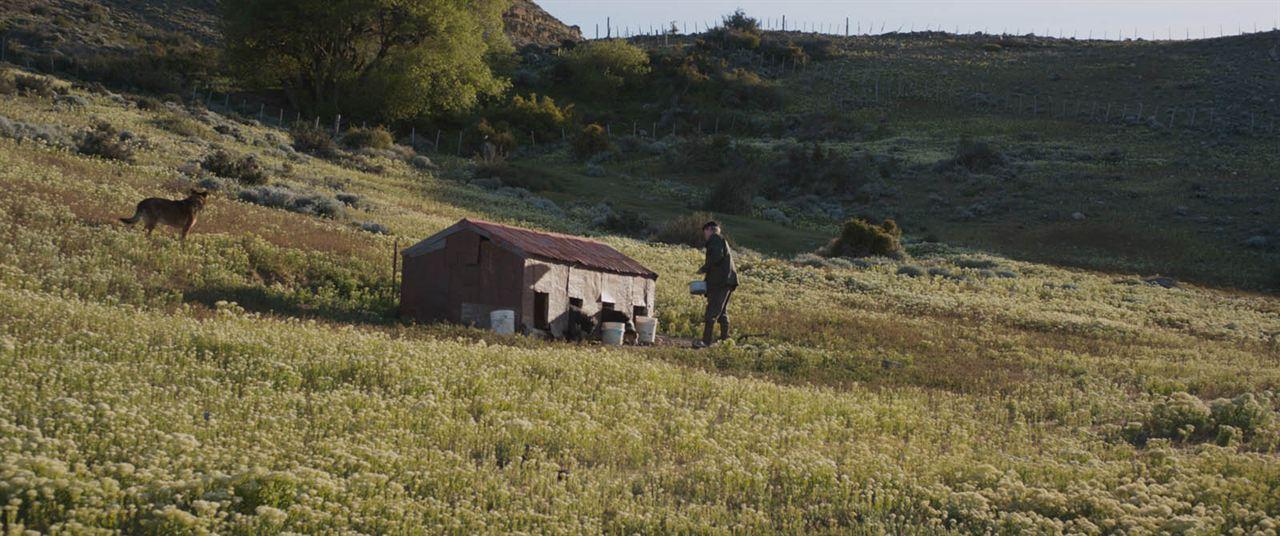 Patagonia, el invierno : Photo Alejandro Sieveking