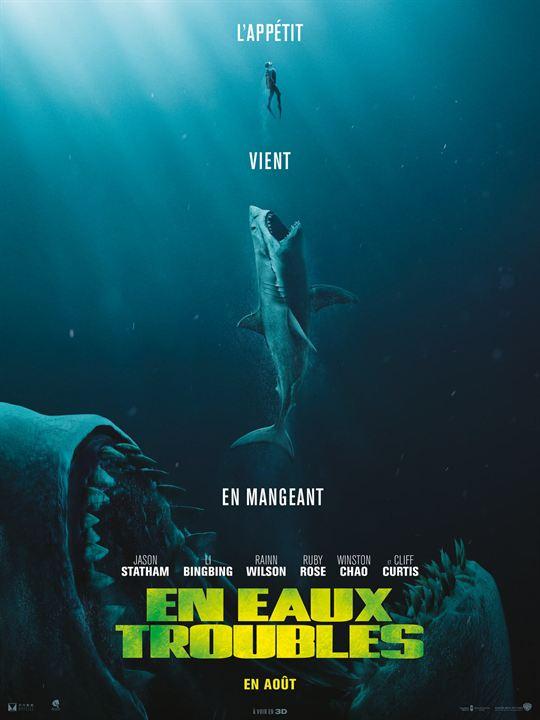 Activité: Irez-vous voir ce film ? Non ? Pourquoi ? 0352542