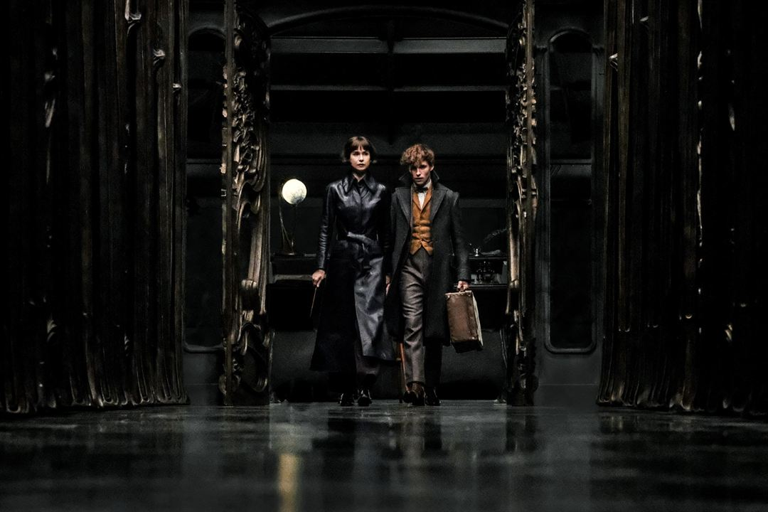 Les Animaux fantastiques : Les crimes de Grindelwald : Photo Eddie Redmayne, Katherine Waterston