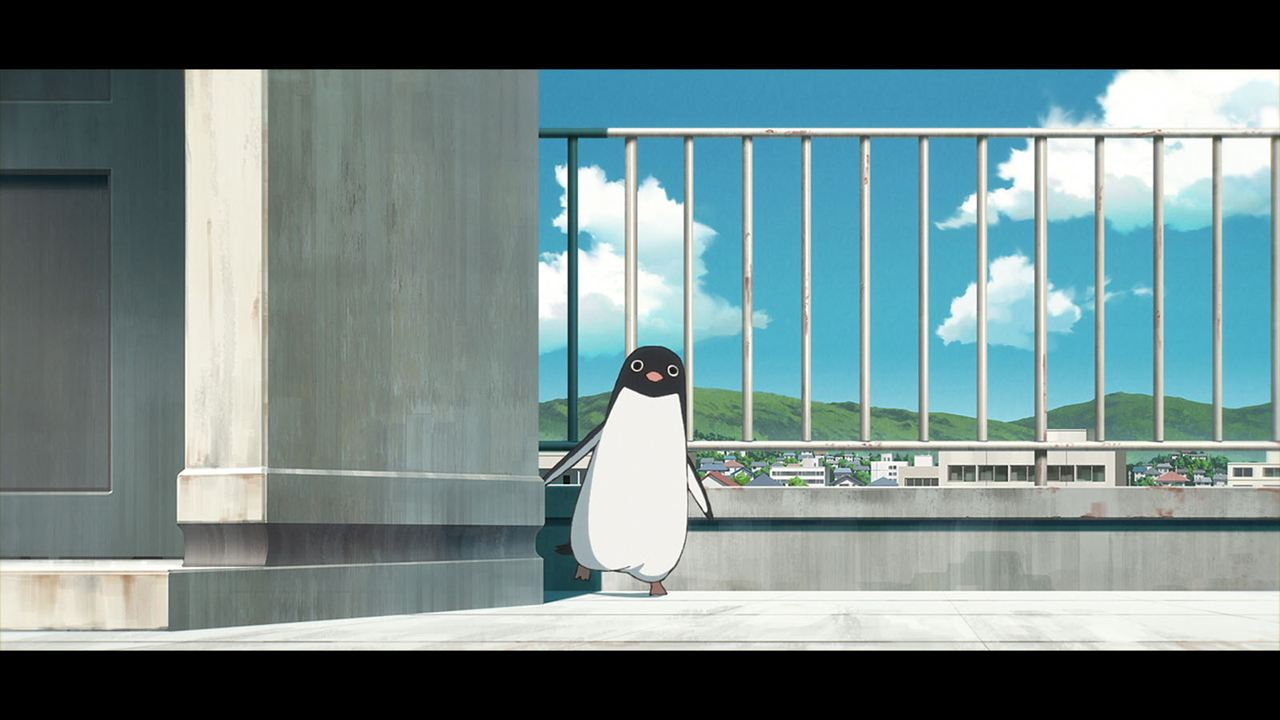 Le Mystère des pingouins : Photo