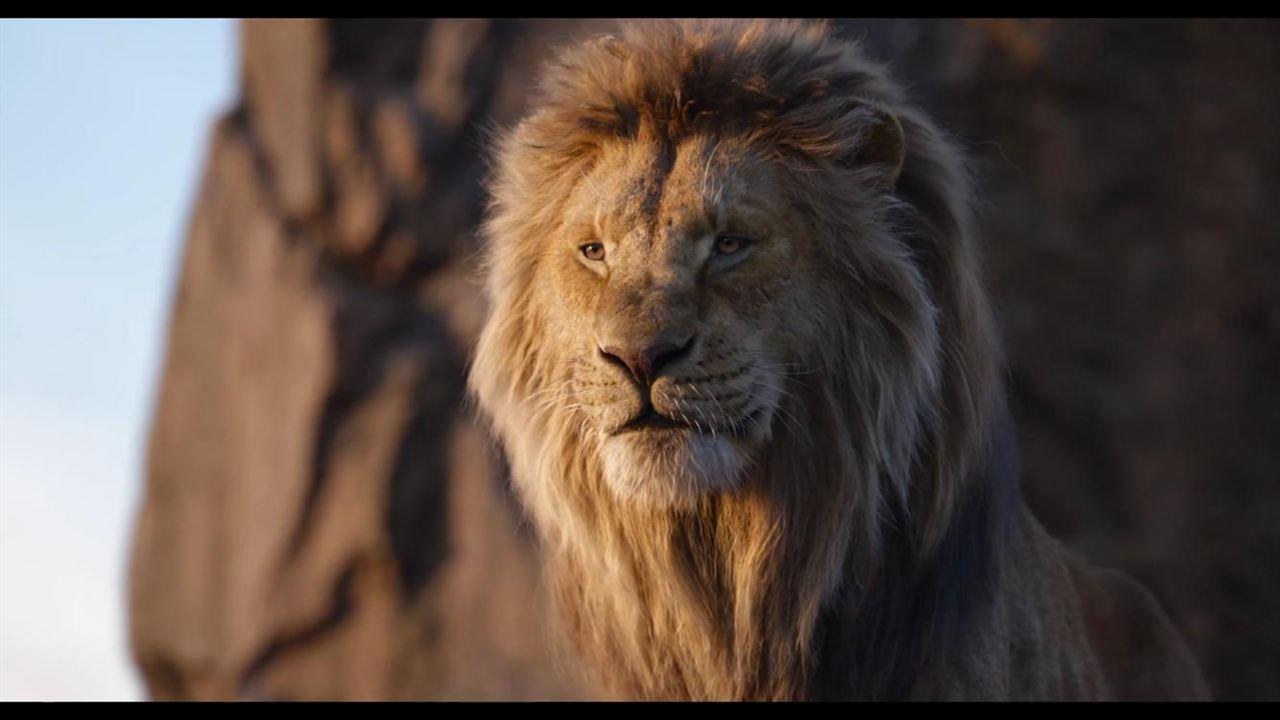 Le Roi Lion : Photo