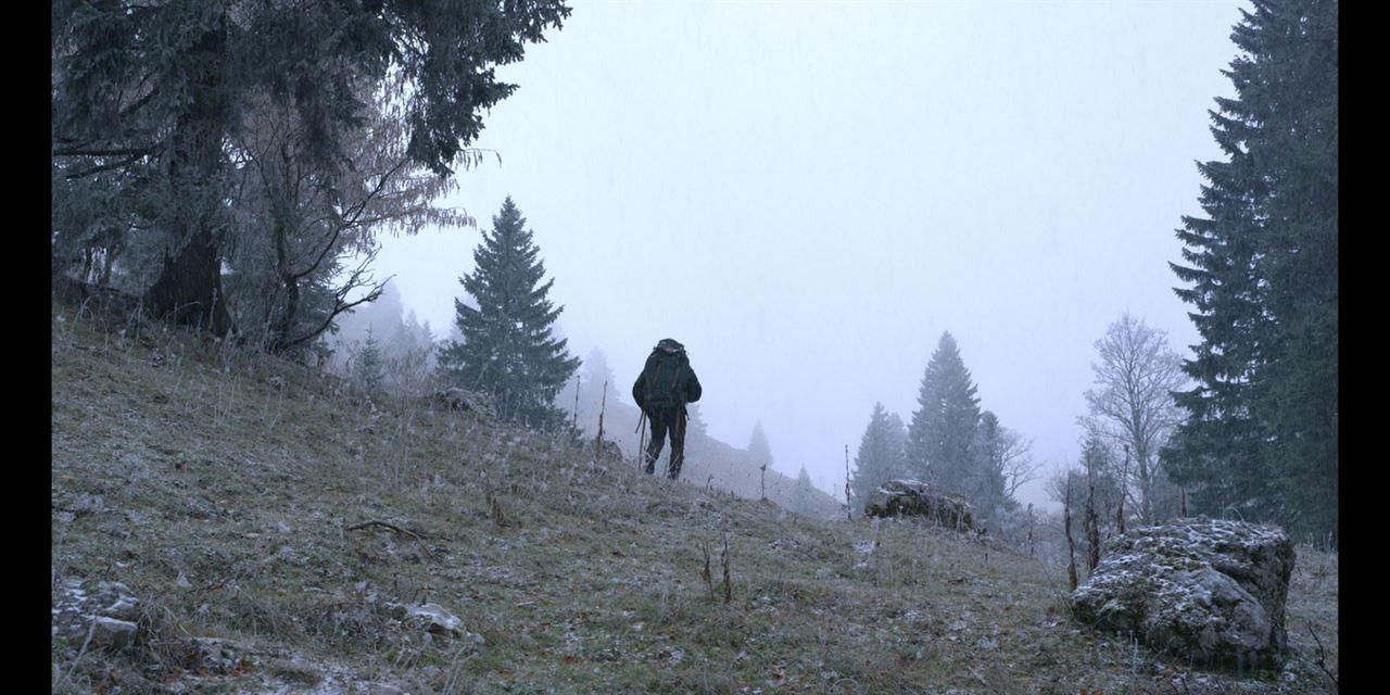 Marche avec les loups : Photo