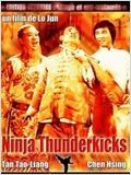 Telecharger Ninjas Thunderkicks Dvdrip