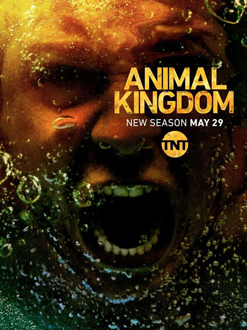 Affiche de la série Animal Kingdom