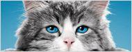 Nouvelle bande-annonce Ma vie de chat : Kevin Spacey dans la peau d'un félin casse-cou !