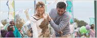 Nouvelle bande-annonce Bridget Jones Baby : Colin Firth et Patrick Dempsey se battent pour conquérir Renée Zellweger !