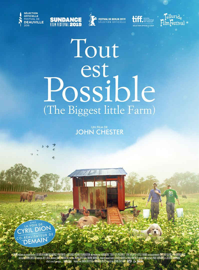 affiche du film Tout est possible