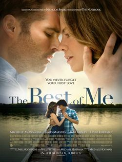 regarder The Best of Me en streaming