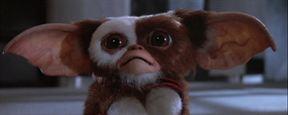 """Non, Gremlins 3 """"ne sera pas un remake"""""""