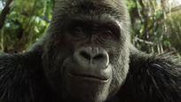 Bande-annonce Le Seul et unique Ivan sur Disney+ : Bryan Cranston se lie d'amitié avec un gorille